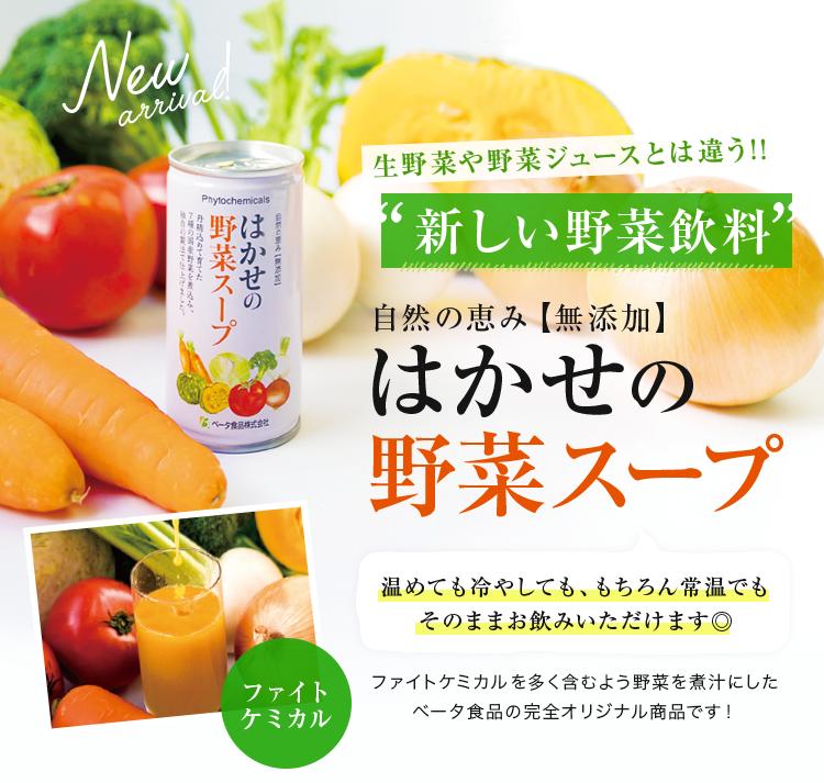 自然の恵み【無添加】はかせの野菜スープ