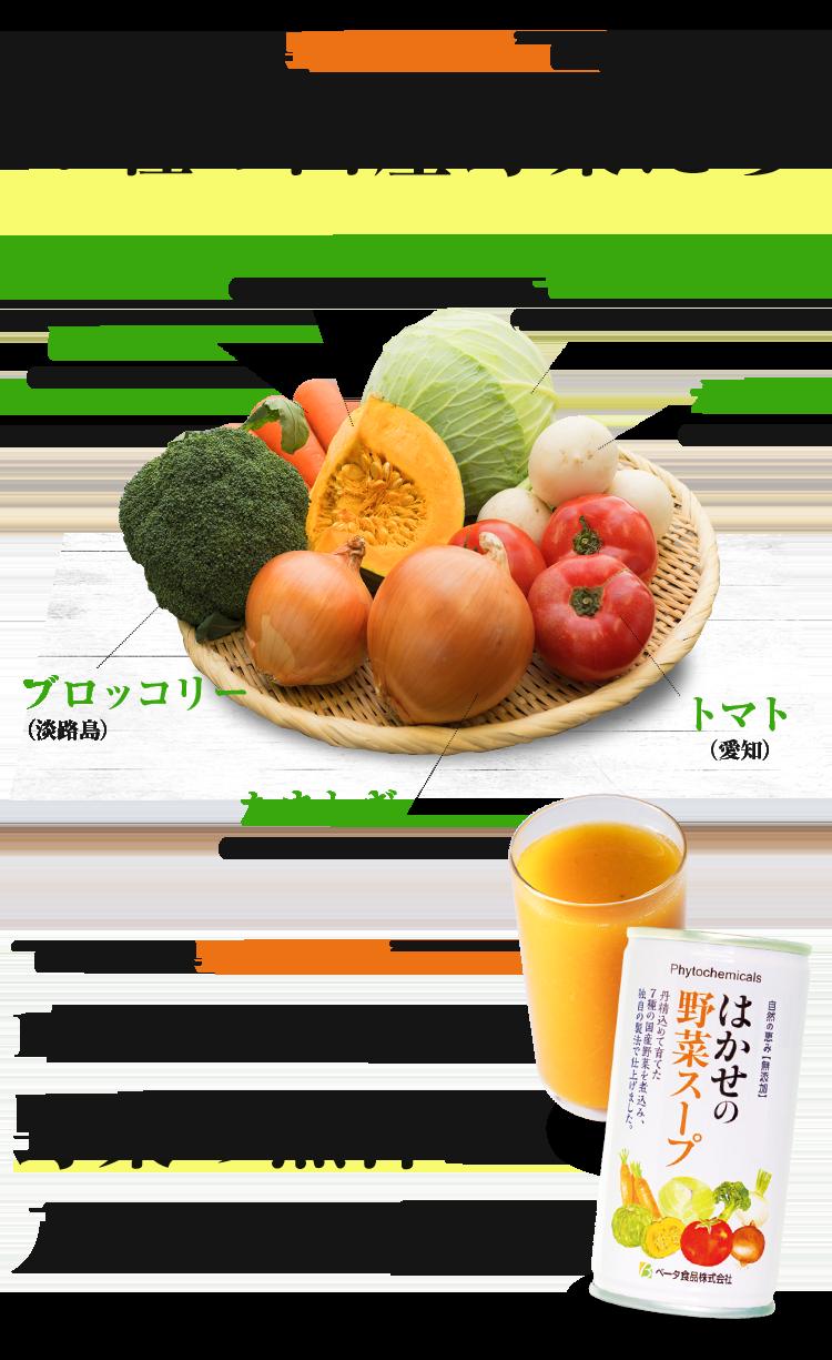 """はかせの野菜スープ""""に含まれる7種の国産野菜たち"""