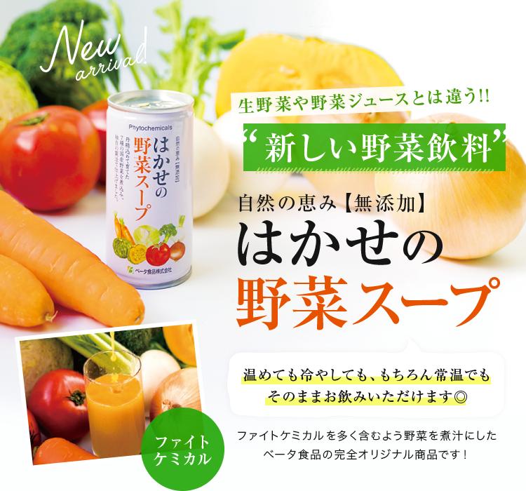 はかせの野菜スープ
